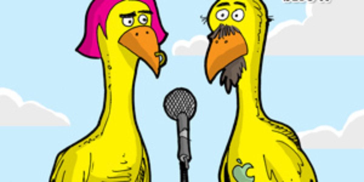 showbiz-chickens